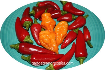 Hot Corner Chilli Peppers Recipes