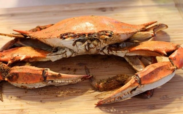 What does Blue Crab Taste like